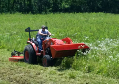 Brush Hog Mowing