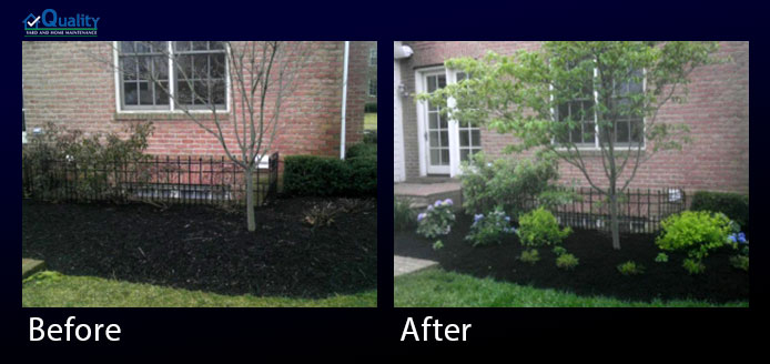 Before and After Landscaping - Install New Plants