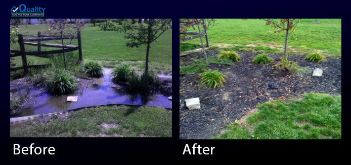 Before and After Landscaping - Drainage Problem