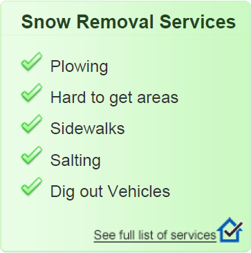 Snow Plow Services